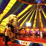 Cine a inventat circul